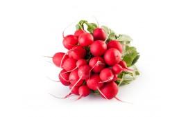 Radis rouge AB (botte)