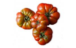 Tomate rebellion AB (500g)