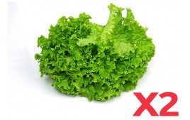 Salade AB (Lot de 2)