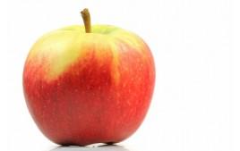 Pomme Elstar AB (500g)