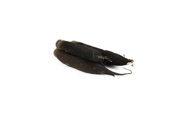 Radis noir AB (500g)