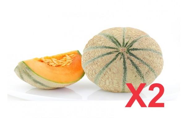Melon Charentais AB (pièce)