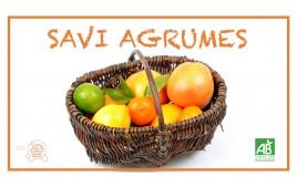 SAVI AGRUMES