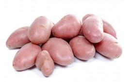 Pomme de terre Rubis AB (500gr)