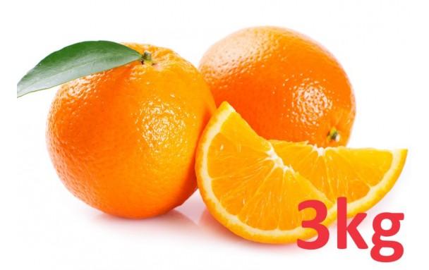 Orange à jus AB (3kg)