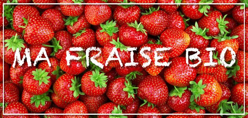 ma fraise bio